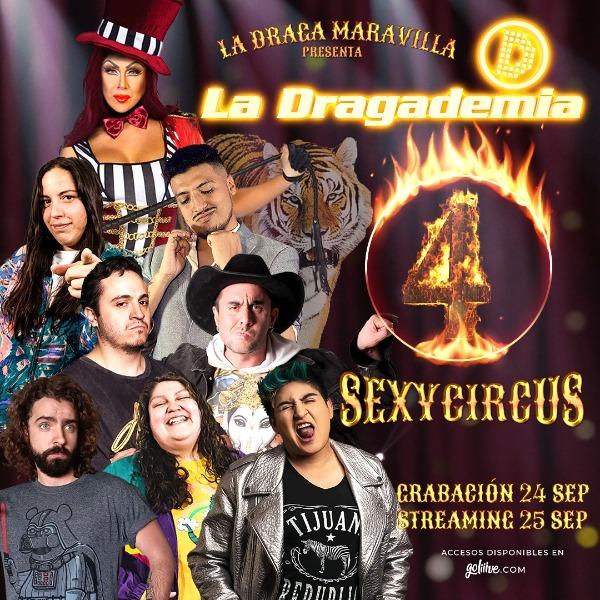 La Dragademia 4 - VIP